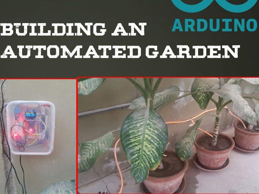 Automatisiertes Pflanzen-Bewässerungssystem